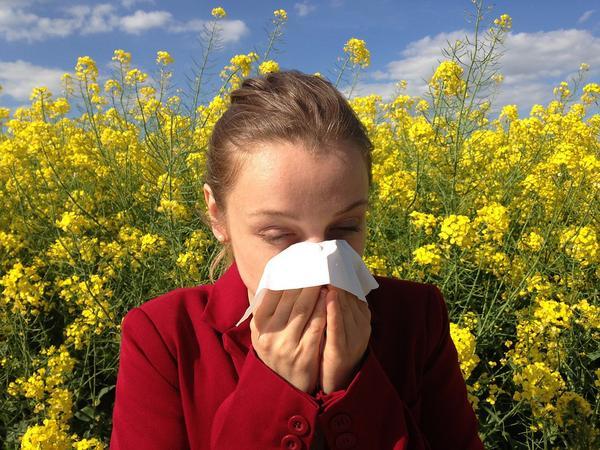 Ciężkie życie alergika