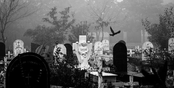 Zamówienie pomnika na grób